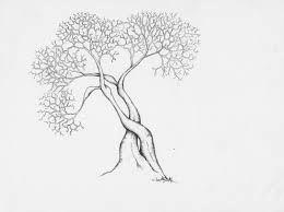 Dessin arbre sans feuille recherche google dessins - Dessin arbre sans feuille ...