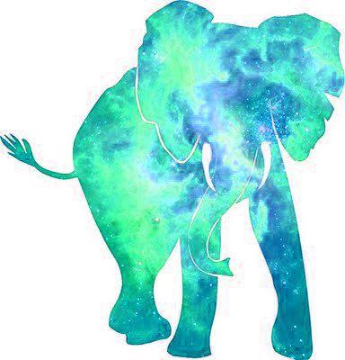 Tie Dye Elephant