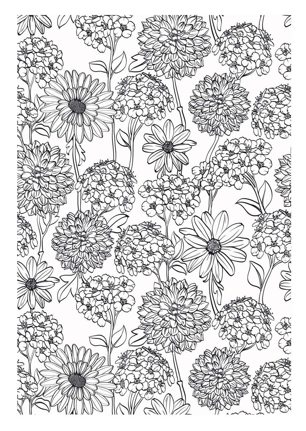 Fleurs Coloriage pour adultes Coloring Pages for Adults