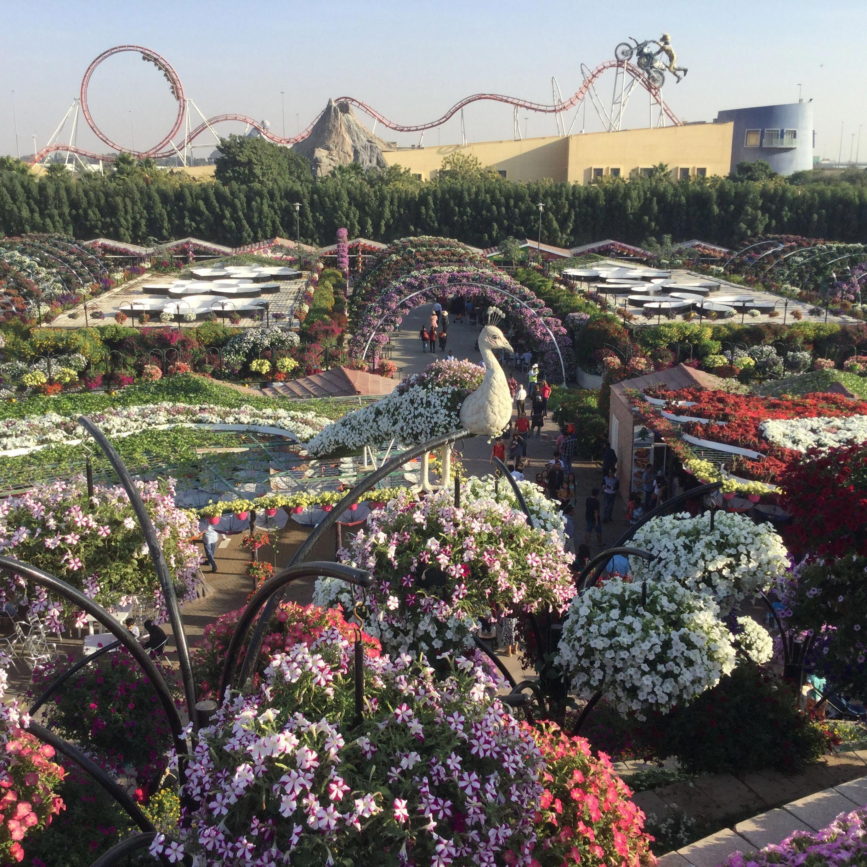 The Magic Garden,Dubai dubaigarden (With images) Dubai