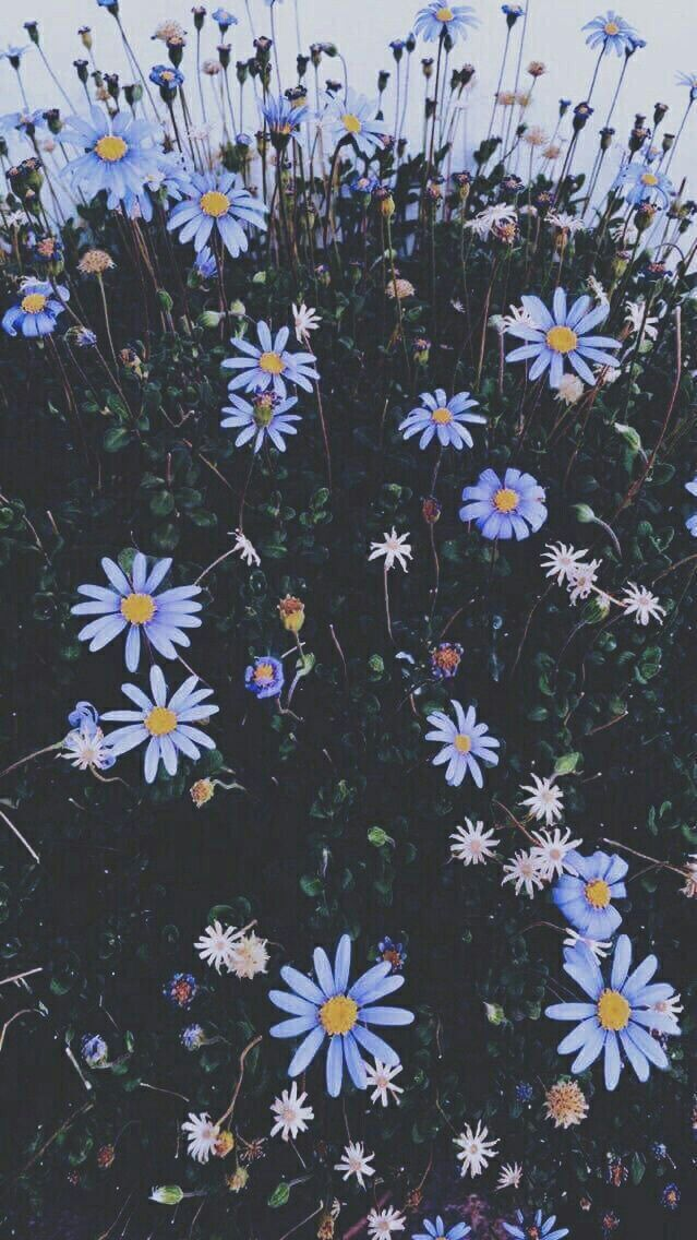 #aesthetic #blue #blueaesthetic from Uploaded by user