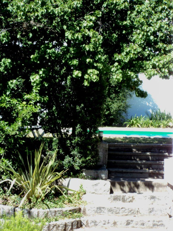 Asomando la piscina