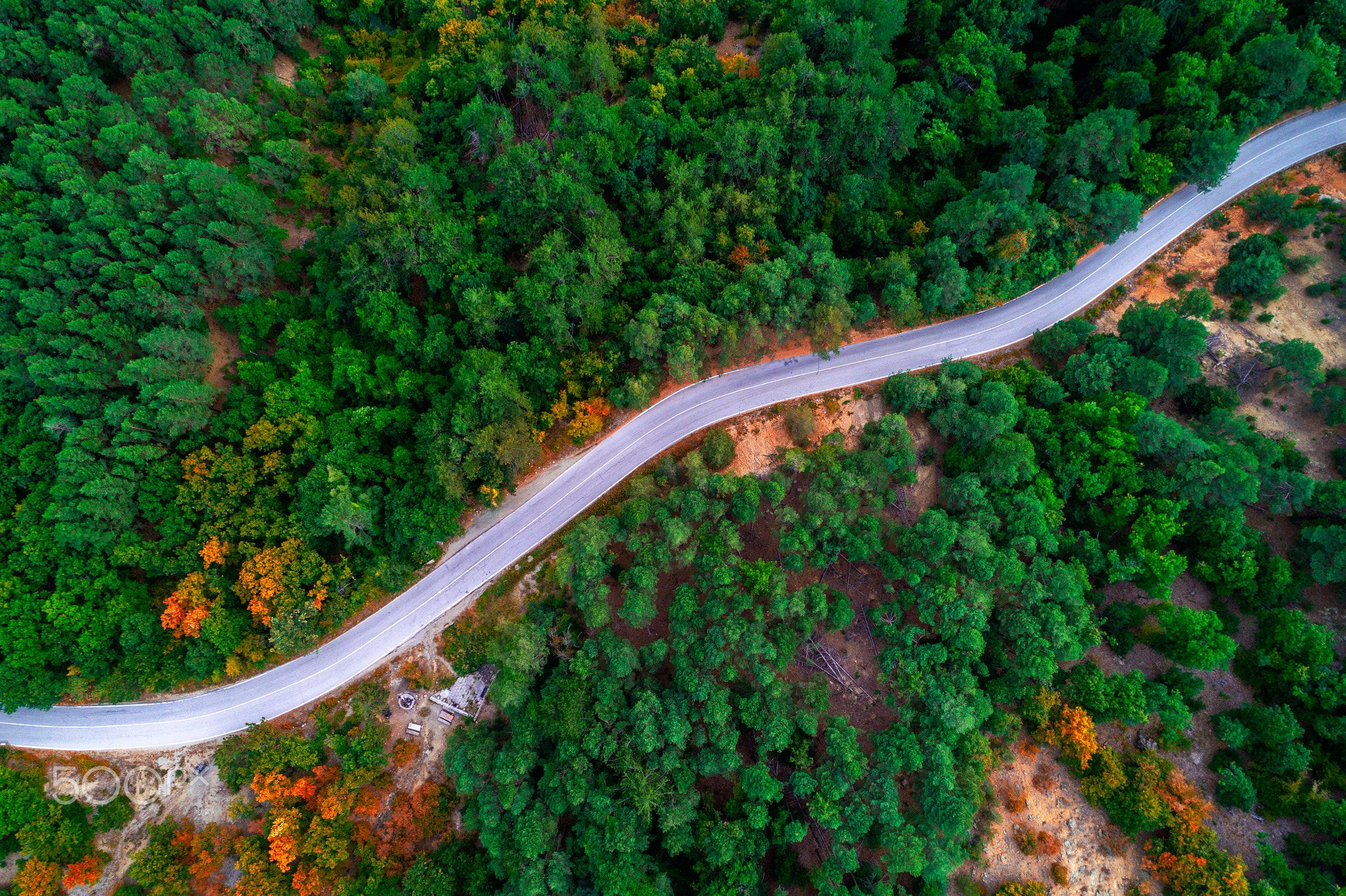 Pin On Drone Photography Drone photo forest road aerial view