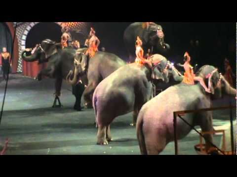Elephant Show At Ringling Bros. And Barnum Bailey Circus 2011