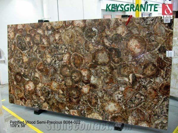 Petrified Wood Semi Precious Slabs From United States Stonecontact Com Petrified Wood Wood Slab