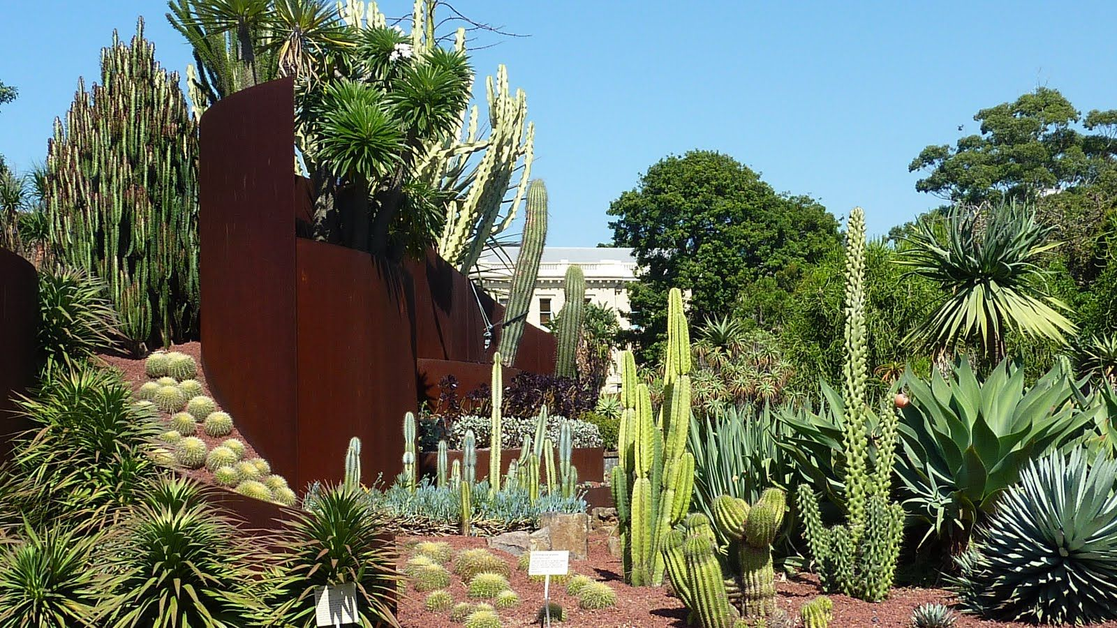 Succulent gardens google search landscape architecture for Jamie durie garden designs