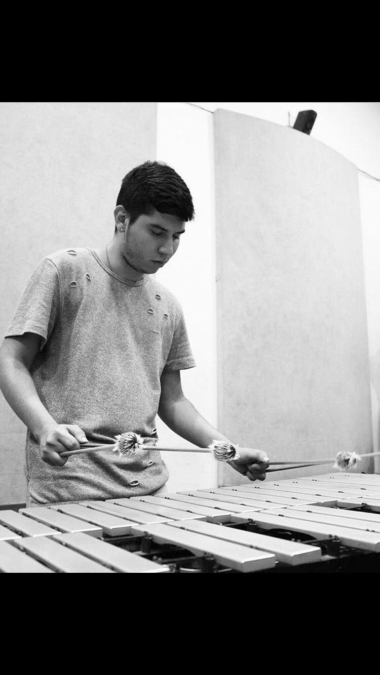 Vibraphone Player  Vibráfono  Marimba One Mallets Music  Life  Percussion  Percusion