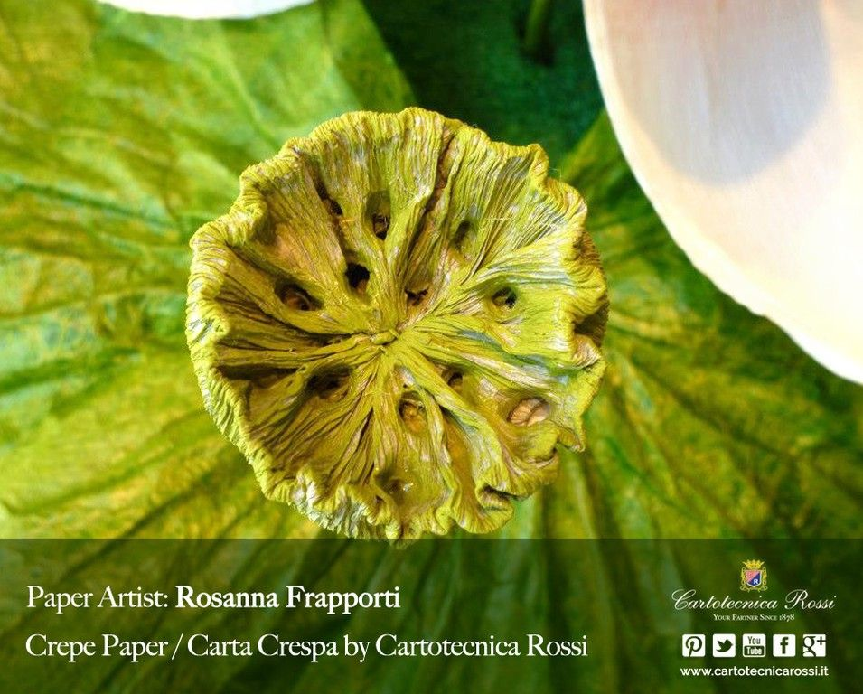 Cartotecnica Rossi's first official Paper Artist is Rosanna Frapporti, an Italian artist specialized in shaping crepe paper and turning it into flowers, dolls, bombonnières, and much much more. Discover her story!