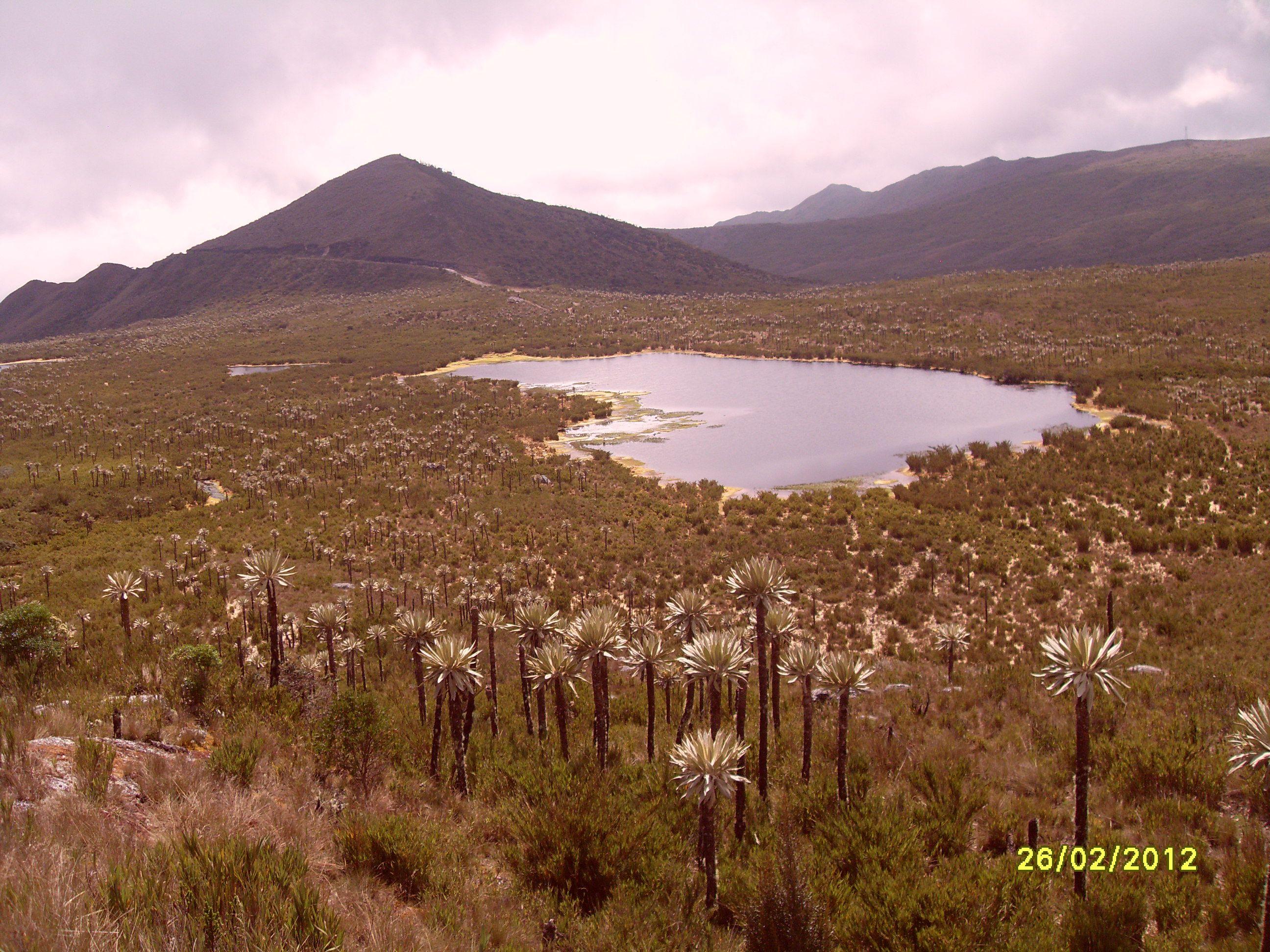 Laguna de Chingaza, cerca de Bogotá,Región Andina ,Colombia Foto de Nirza López