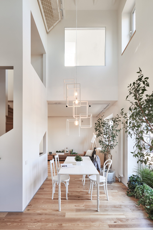Family house renovation by ruetemple also best plan images in flooring arquitetura carpentry rh pinterest