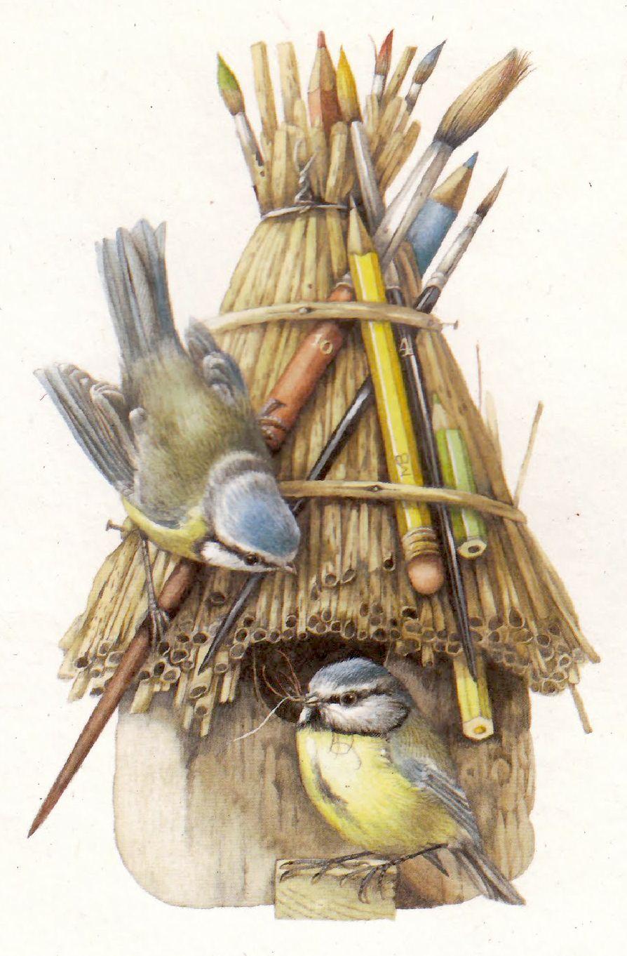 Marjolein bastin ilustraciones pinterest oiseaux - Bastin de bois ...