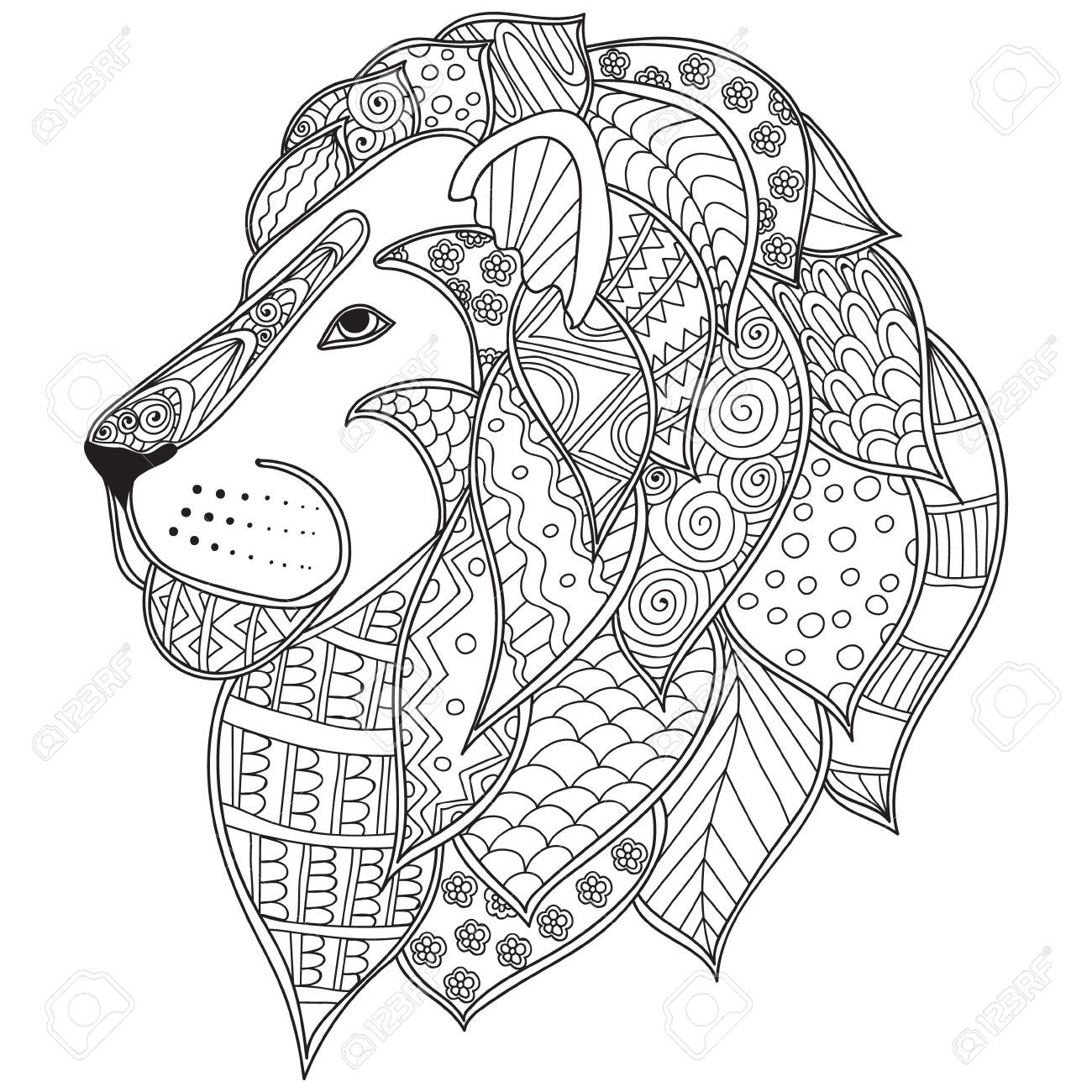 Stock Vector Lion Coloring Pages Coloring Pages Animal Coloring Pages