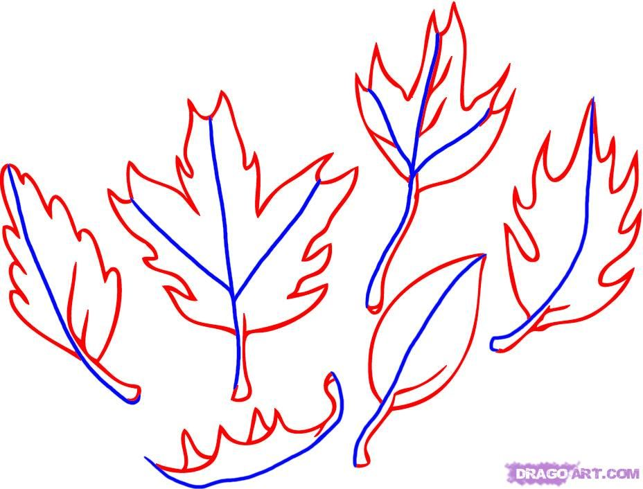 13 Step By How To Draw Fall Leaves | Faith by mom | Pinterest ...