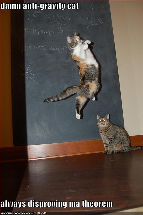 damn anti-gravity cat always disproving ma theorem