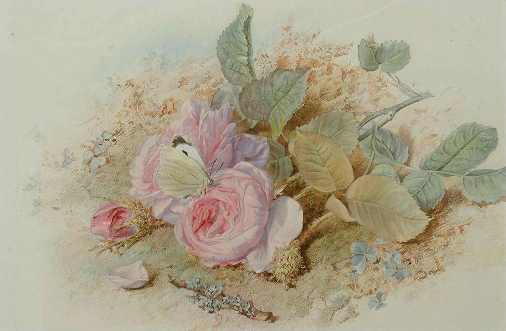 картинки розы красивые рисунки прованс словам