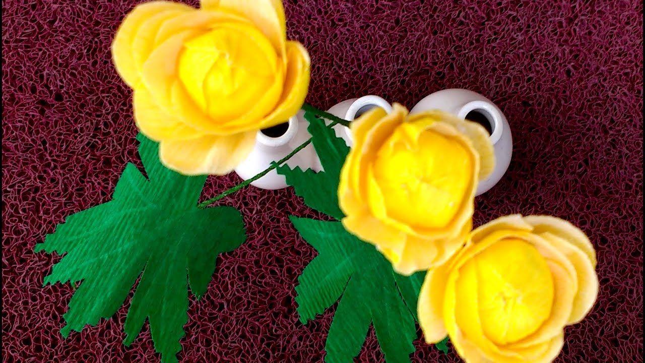 Paper Flower Globeflower  Trollius europaeus flower