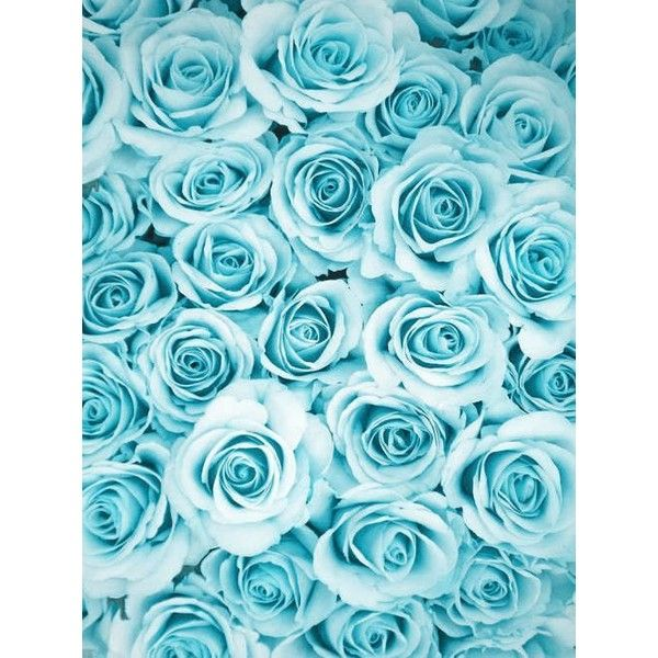 Light Blue Background Tumblr Google Search Liked On Polyvore Featuring Filler Photos Light Blue Aesthetic Blue Aesthetic Pastel Blue Wallpaper Iphone