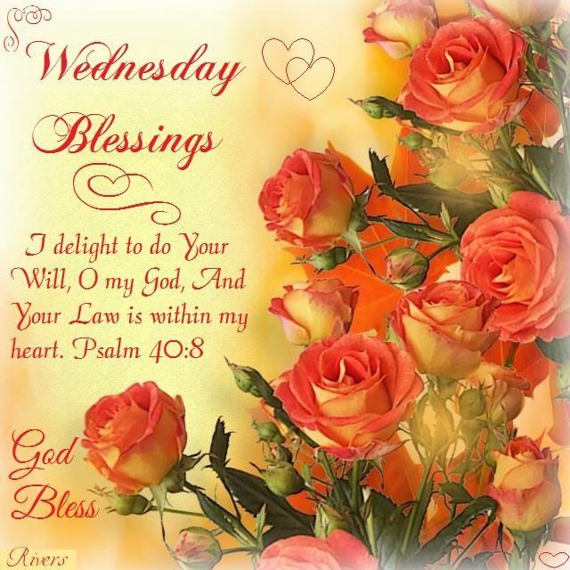 Wednesday Blessings. Psalm 40:8- God Bless.   Good morning ...
