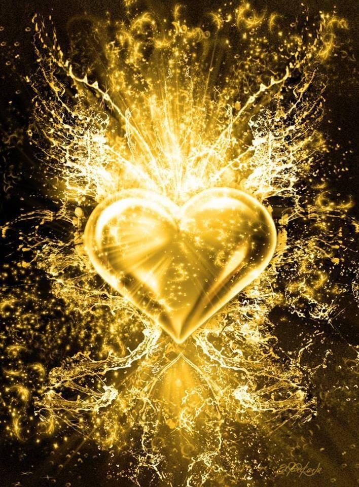 фото золотого сердца историю породы