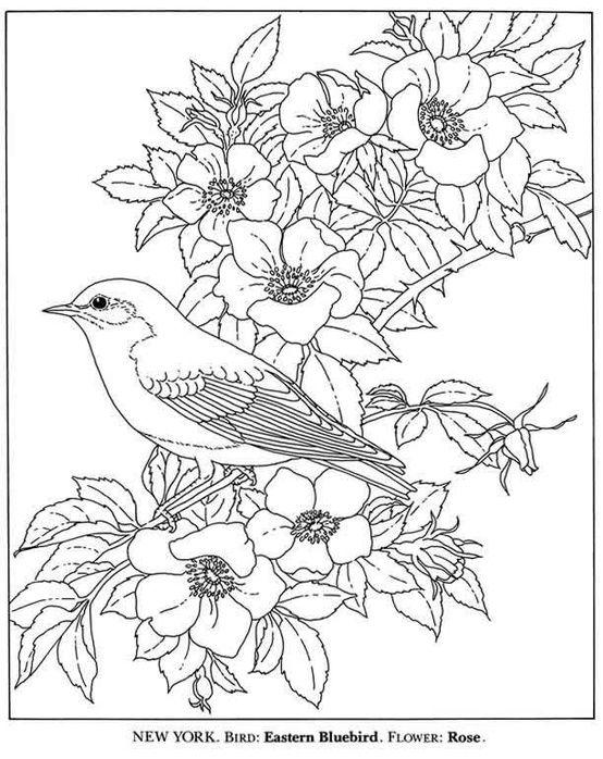Kleurplaten Vogels.Kleurplaten Vogels En Bloemen Kerst 2018