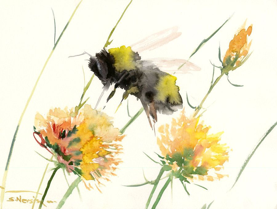 Bumblebee and Yellow flowers, original watercolor painting, 16 x 12 ...