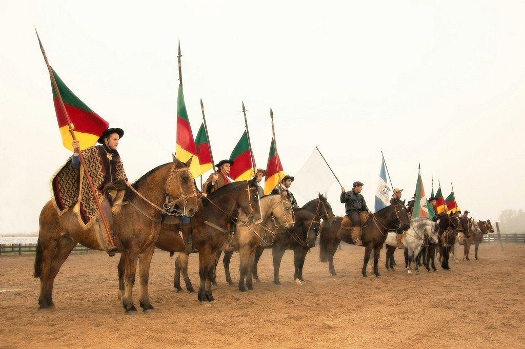 Cavalos Horse Campeiro Gaucho Rio Grande Do Sul Com Imagens