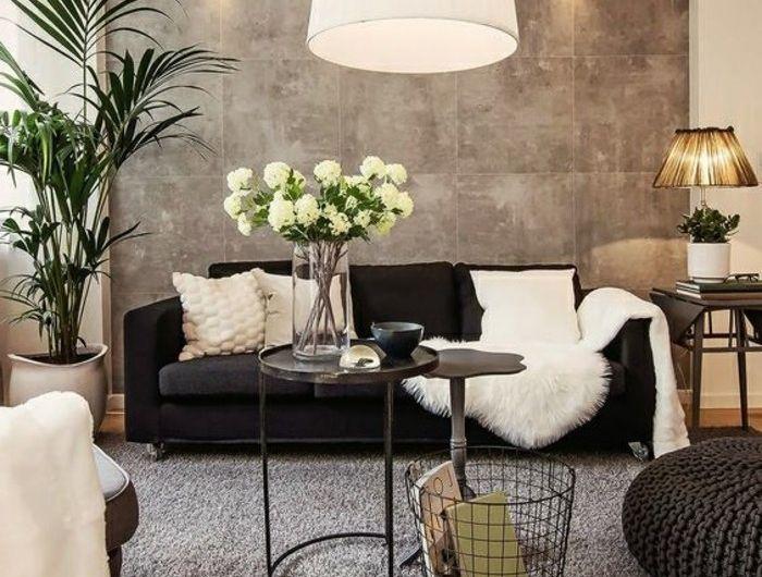 Salon Tres Elegant Panneau Mural Gris Canape Noir Tapis Gris Petits Accents  Blancs