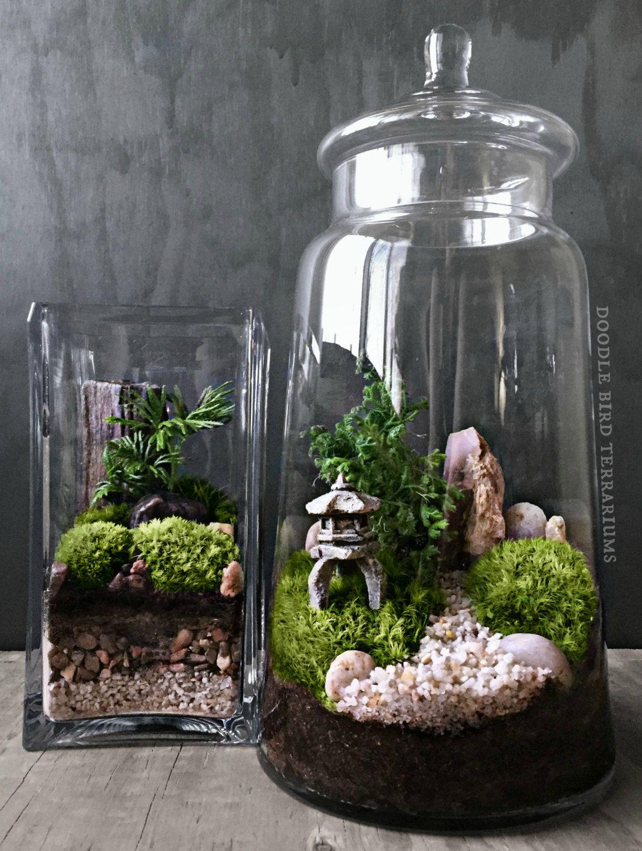 die besten 25 terrarium einrichtung ideen auf pinterest kakteen garten dekoration und. Black Bedroom Furniture Sets. Home Design Ideas