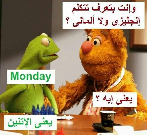 ههههههههههه The Muppets Tv Show Muppets The Muppet Show