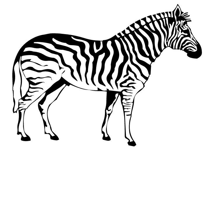 zebra coloring pages for kids - Zebra Coloring Pages