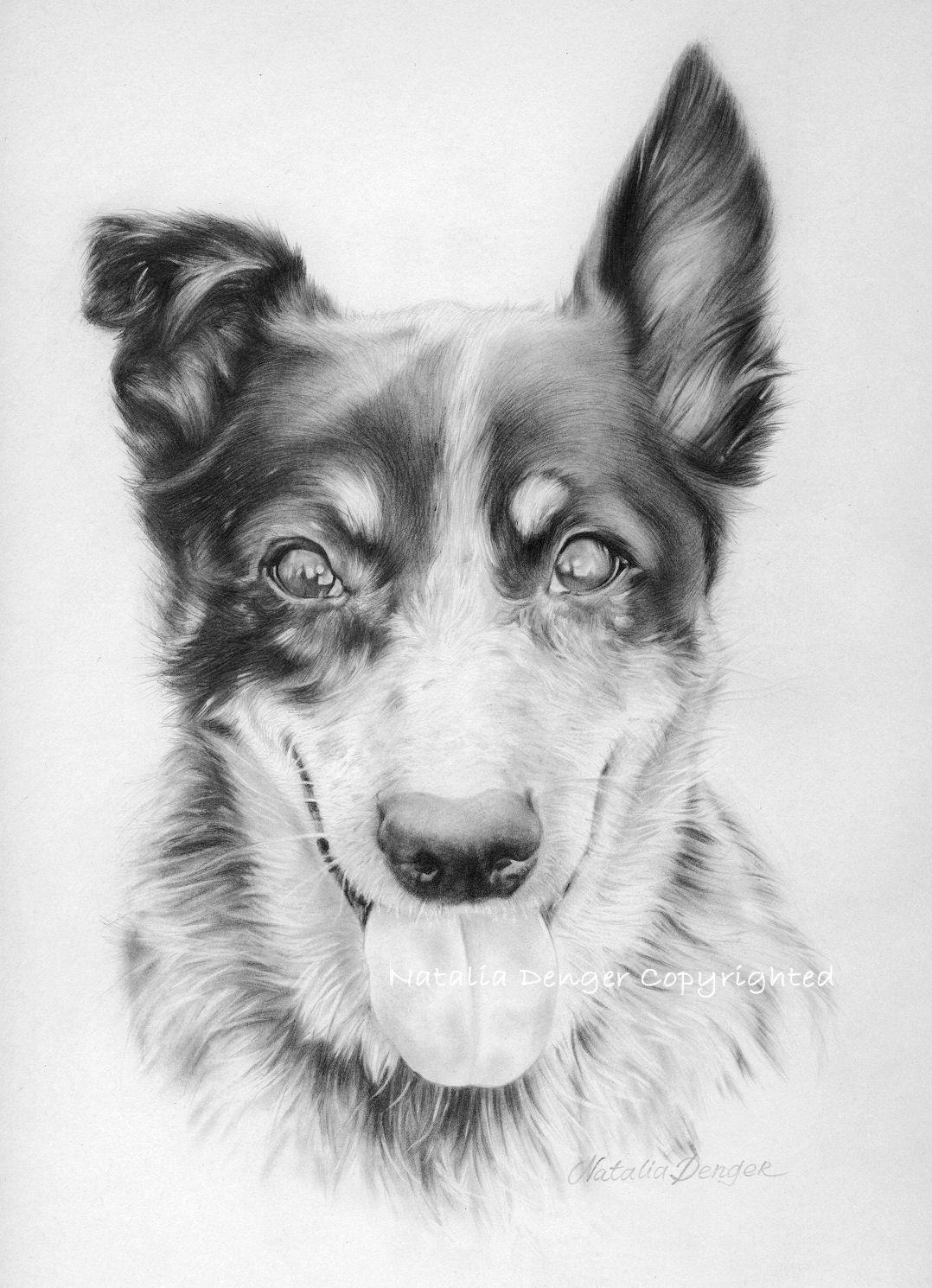 Custom Animal Portrait, Original Portrait, Pet, Portrait, Dog, Cat, Pencil, Drawing, Face, Animal, Little Friend. $60.00, via Etsy.