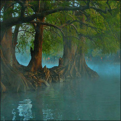 Magical Misty Fog on Water