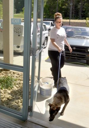 Move In Day New Expansive Animal Shelter Open Today Animal Shelter Shelter Moving Day