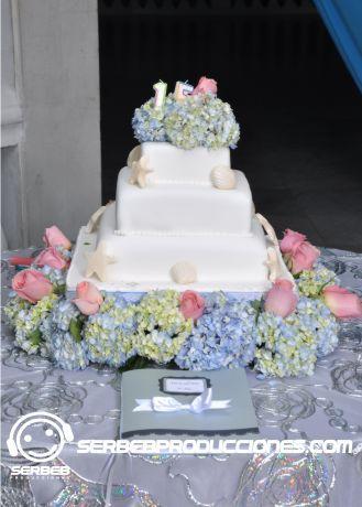 Torta Quineceañera http://serbebproducciones.com/