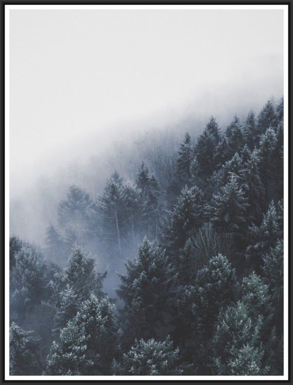 Forest hillside poster, high quality print, home decor, wall art, contemporary poster, gallery wall,