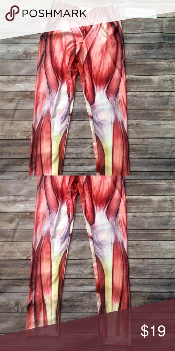 Muscle Leggings Leggings Store Muscles And Cotton