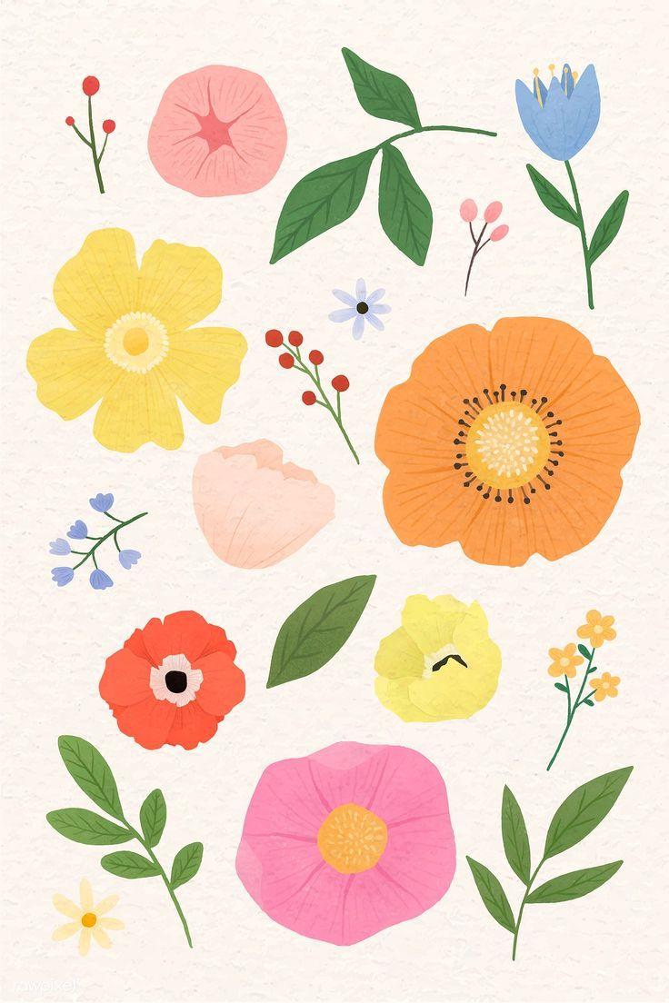 Download Premium Vector Of Colorful Floral Design Set Vector 935593 Flower Graphic Design Flower Drawing Floral Illustrations