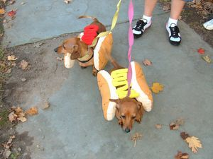 Thelma And Louise Enjoyed Watching The Jim Thorpe Halloween Parade Halloween Parade Halloween Halloweenie