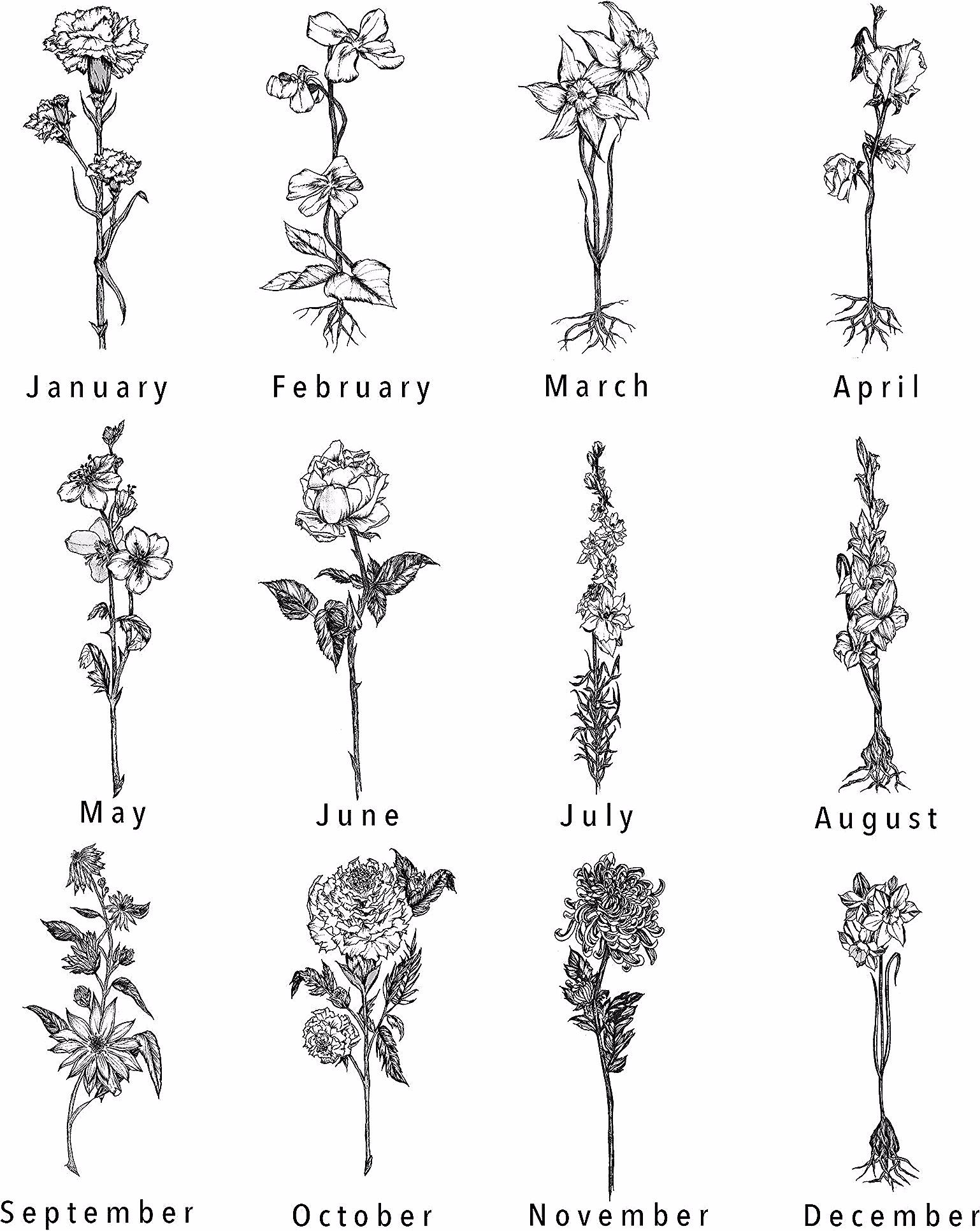 Daffodil in 2020 (With images) Birth flower tattoos