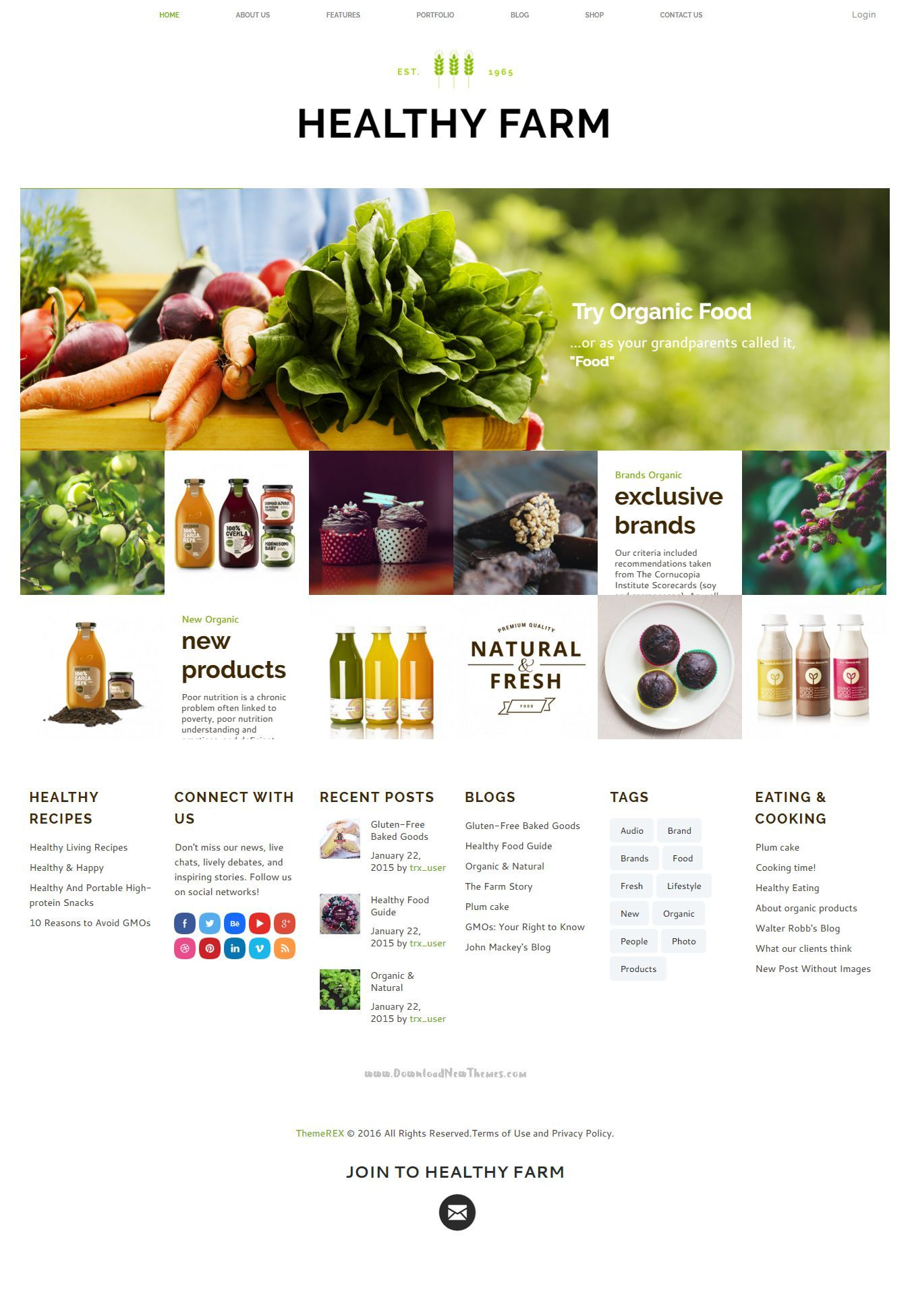 Healthy Farm | Food & Agriculture Site Template | Template and Site ...