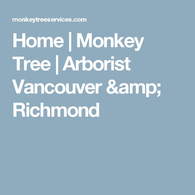 Home | Monkey Tree | Arborist Vancouver & Richmond | Tree ...