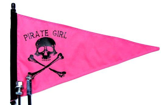 Bike Flags Bicycle Safety Flags Bicycle Safety Flag Atv