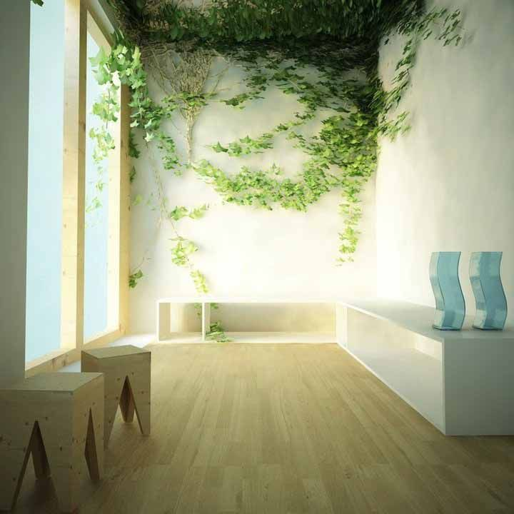 Indoor wall climbing plants | Gardening | Pinterest | Indoor ...