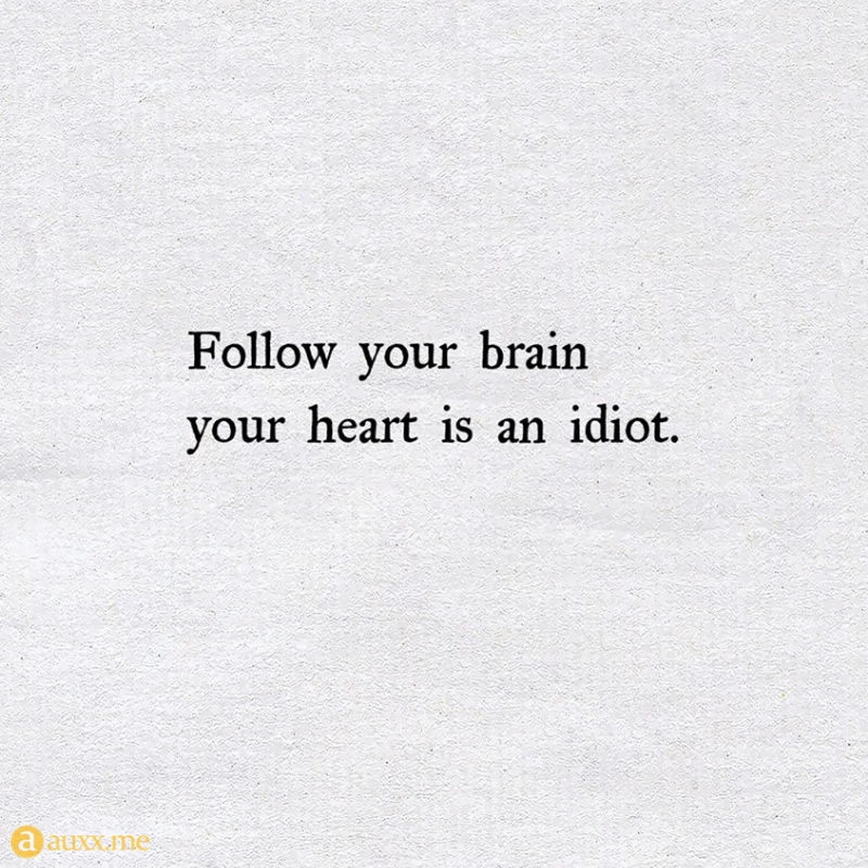 Follow Your Brain Your Heart Is An Idiot Motivatinal Quotes Sarcastic Quotes Idiot Quotes