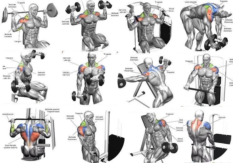 Standing behind the chair - Best Shoulder Building Exercises Shoulders Pinterest The O Jays