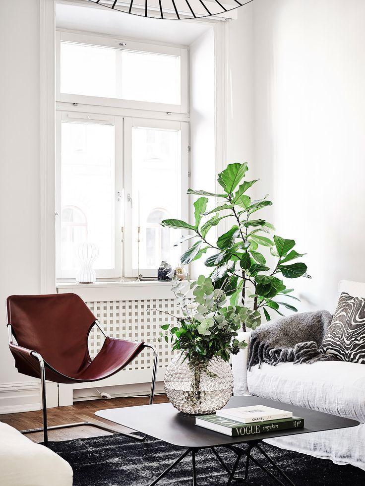 love the chair and the plants!  Entrance Fastighetsmäkleri