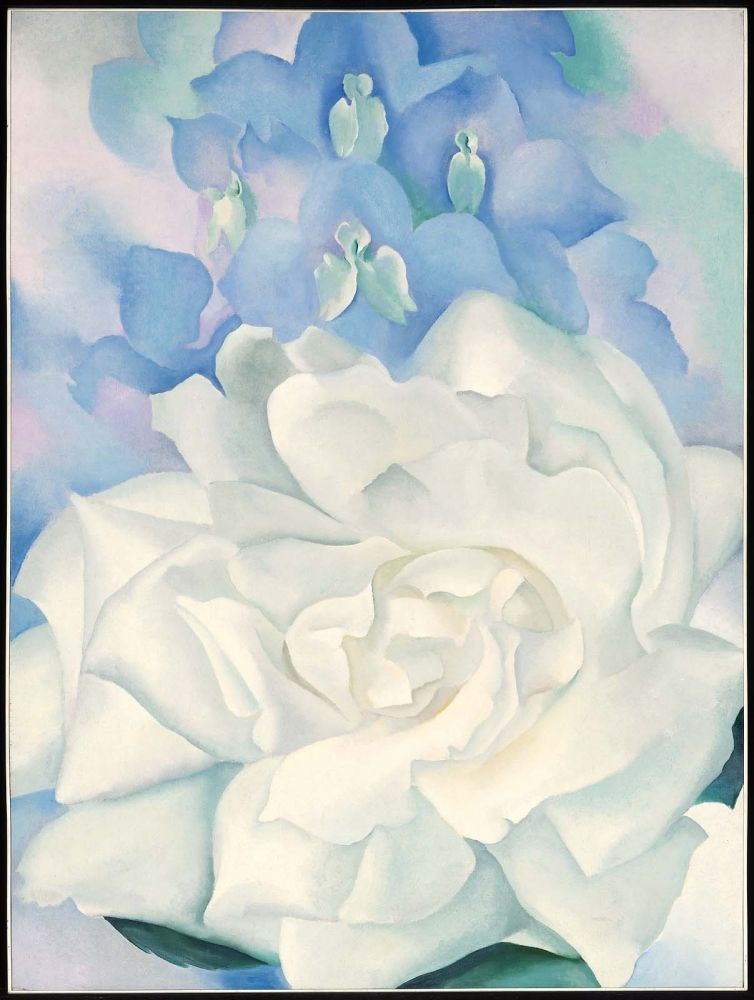 Georgia okeeffe white rose with larkspur no 2 1927 oil on georgia okeeffe white rose with larkspur no 2 1927 oil mightylinksfo