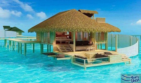 أفضل الجزر في المالديف للتمتع بالهدوء والراحة المثلى تعتبر جزر المالديف من أشهر الأماكن السياحية لقضاء العطلات الهادئة Vacation Places Dream Vacations Places