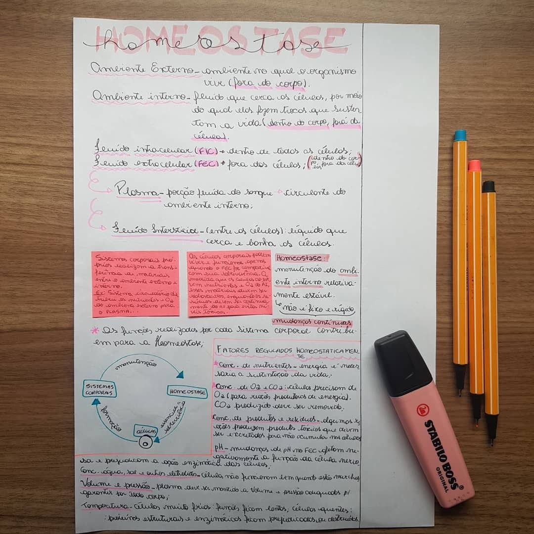 Parte 1 - Resumo De Fisiologia. HOMEOSTASE