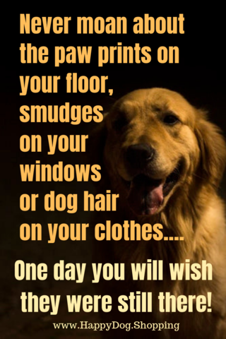 What A Lovely Way To Show Your Love For Your Beautiful Pup Shop At Happydog Shopping Dog Quotes Dog Quotes Love